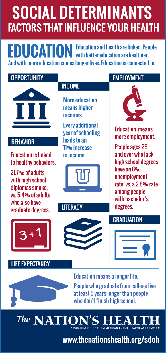 Education infographic social determinants of health
